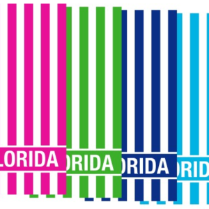 Florida Souvenir Striped Towel